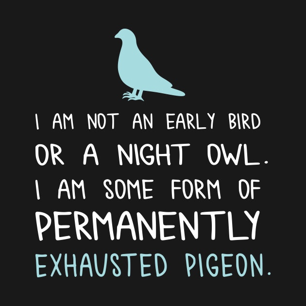 (I am actually a night owl, I just think this one is really funny)